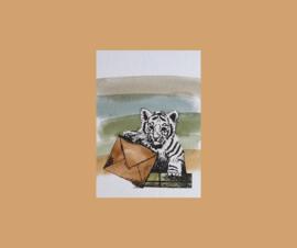kaart  tijgertje