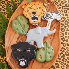 Jungle (set van 6 stuks)