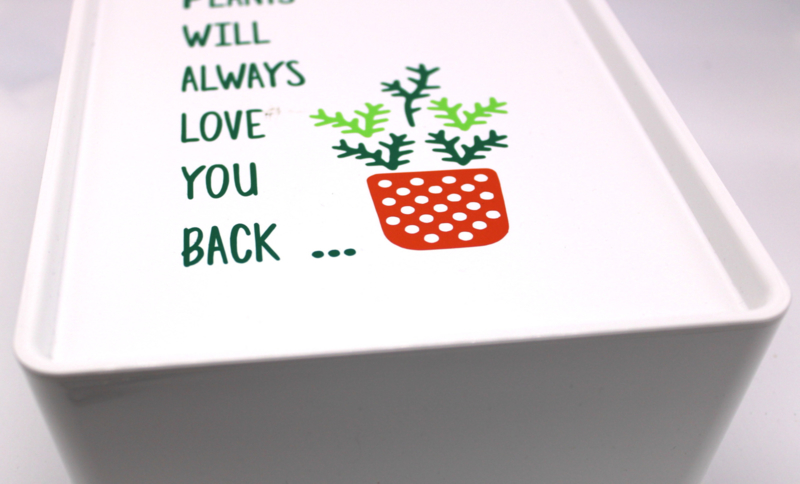 Plants will always love you back