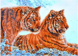 Diamond Dotz 'Tigers in the snow'