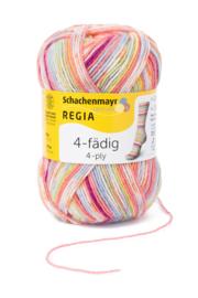 Regia Color 50gr Mix 1132