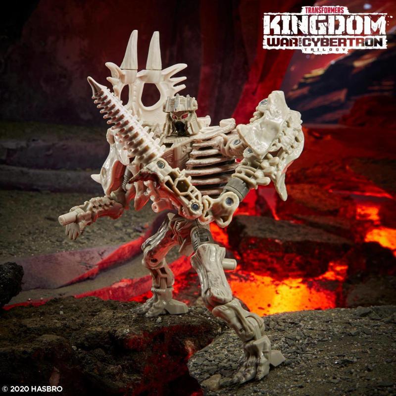 F0674 Kingdom Core Ractonite [case of 8 pcs]