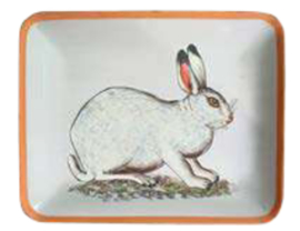 Little tray rabbit