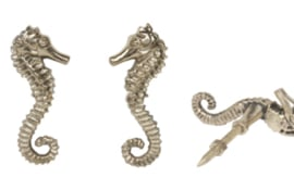 seahorse knop