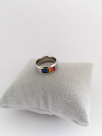 RVS Ring met kleurtjes
