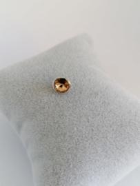 RVS top 6mm goudgeel