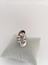 RVS Ring groot