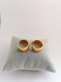 RVS oorbellen goud