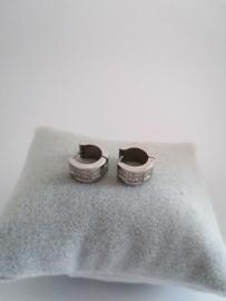 RVS oorbellen met steentjes