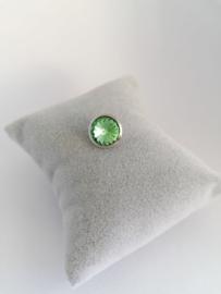 RVS top 10mm groen