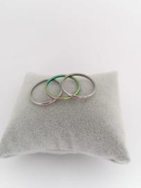 RVS Ringen
