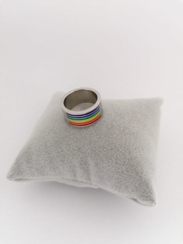 RVS Ring regenboog