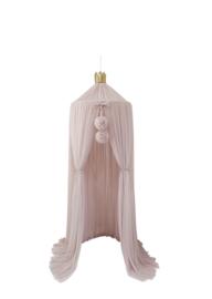 Dreamy Canopy - Champange