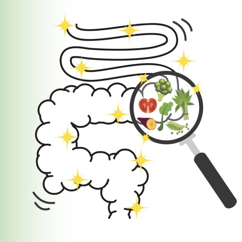 Voeding bij de ziekte van Crohn, colitis ulcerosa en het prikkelbare darmsyndroom