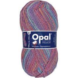 Opal Cotton Premium 2020 4-draads 100g - 9844