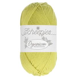 Scheepjes organicon -50g- 213 Sapling
