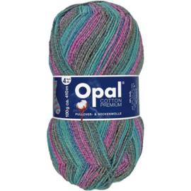 Opal Cotton Premium 2020 4-draads 100g - 9841