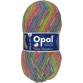 Opal Cotton Premium 2020 4-draads 100g - 9846