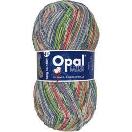 Opal Cotton Premium 2020 4-draads 100g - 9842
