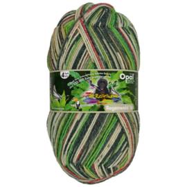 Opal Regenwald 16 4-draads 100g  9904 Groen, Grijs, Beige