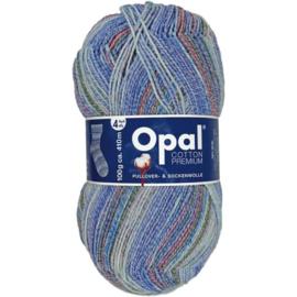 Opal Cotton Premium 2020 4-draads 100g - 9845