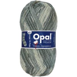 Opal Cotton Premium 2020 4-draads 100g - 9847