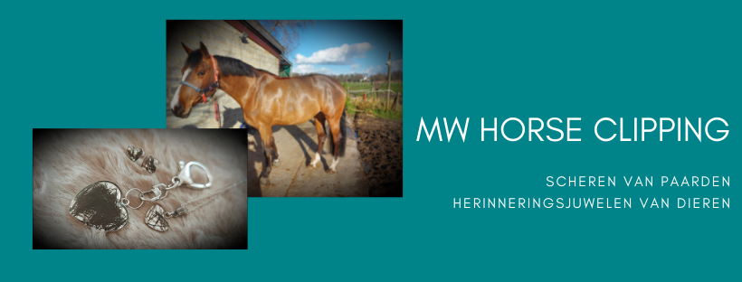 MW Horse Clipping