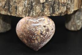 Hart  van Stromatoliet 5 cm