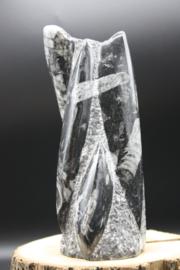 Orthoceras Sculptuur