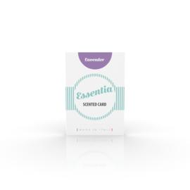 Geurkaart Lavendel