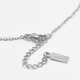 Turtle ankle bracelet   Zilver