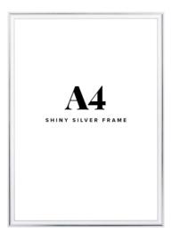 Fotolijst + foto: Aluminium zilver frame