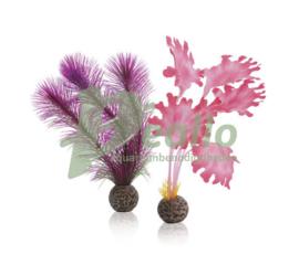 biOrb zeewier set S roze