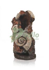 biOrb oude schelp ornament