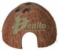Halve kokosnoot 1/2 large