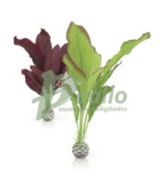 biOrb zijdenplantenset M groen & paar
