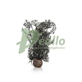 biOrb hoornkoraal S zwart