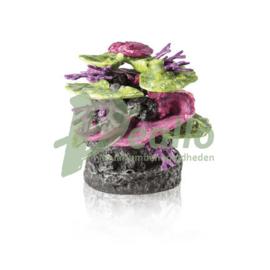 biOrb koraalrots ornament groen-paars