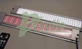 JBL Led Solar Effect RGB 13 watt 75-100 cm