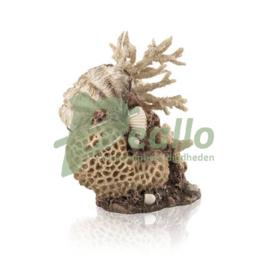 biOrb koraal & schelpen ornament naturel
