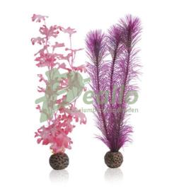 biOrb zeewier set M roze