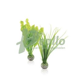 biOrb plantenset S groen