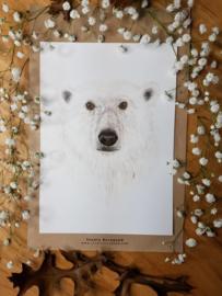 Grote kaart ijsbeer A5