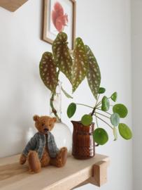 Handgemaakte teddybeer klein Pim