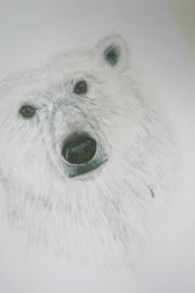Poster Ijsbeer A4(21x29,7cm)