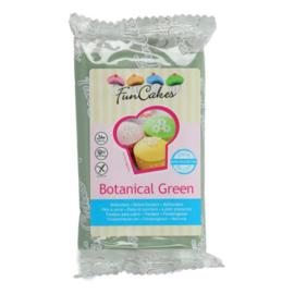 FunCakes | Fondant botanical green 250g