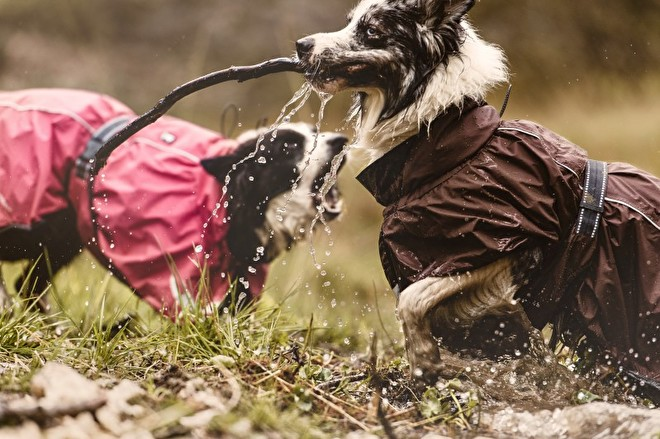 Hurtta hondenjas