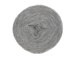 Wol voorgaren (pencil roving) per 10 gram  1027 light grey