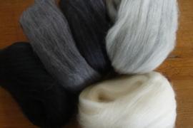 Kleurenset 5 zwart, wit, grijstinten 27 mic