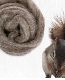 Corriedale eekhoorn - squirrel per 25gram